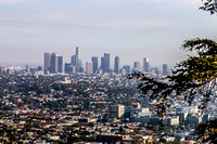 Griffith Park, Los Angeles CA